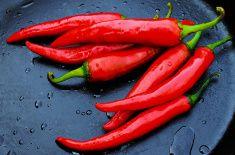 Красный перец на темном фоне stock photo