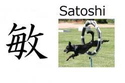 Satoshi (agilidad, astucia) Significado: agilidad, astucia, ágil, astuto, sagaz Lecturas: Satoshi, Toshi 敏 en nombres compuestos: Toshio, Toshiki Nombre de chico Satoshi es un nombre muy común de chico y puede tener diferentes significado dependiendo del kanji: 智 (filosofia) 慧 (sabiduria).