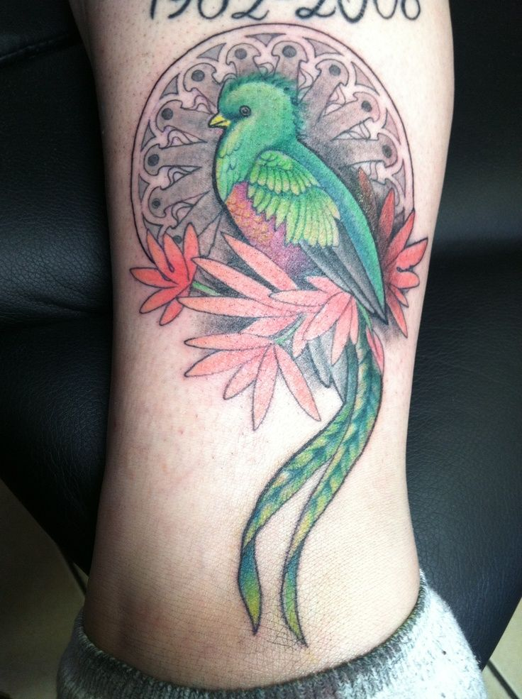 Image result for quetzal bird tattoos
