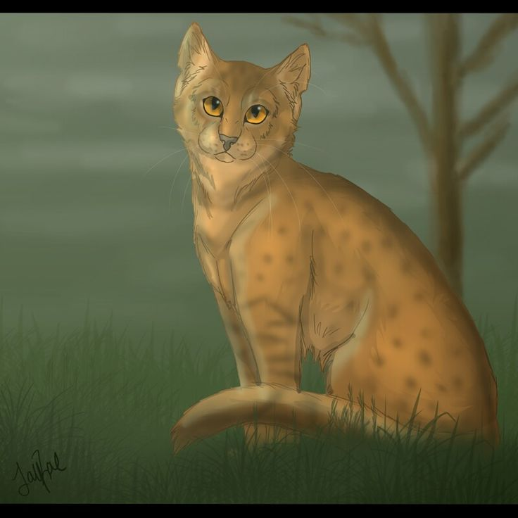 Love her leopardfur