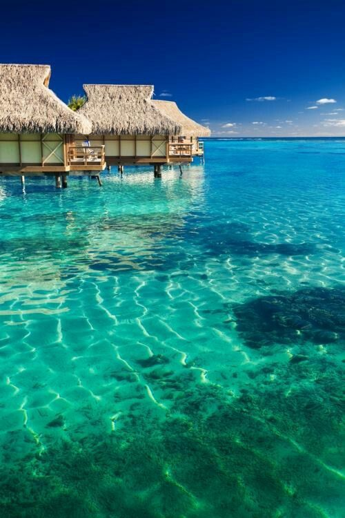 Bora Bora, Tahiti. #vacation #travel Re-pinned by www.avacationrental4me.com