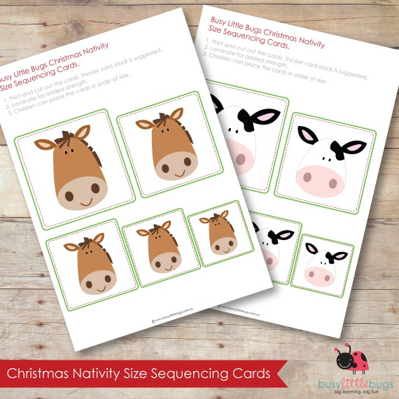 CHRISTMAS NATIVITY SIZE SEQUENCING CARDS by Busy Little Bugs