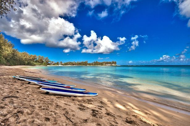 Surf's up! Exploring Hawaii's hidden charms