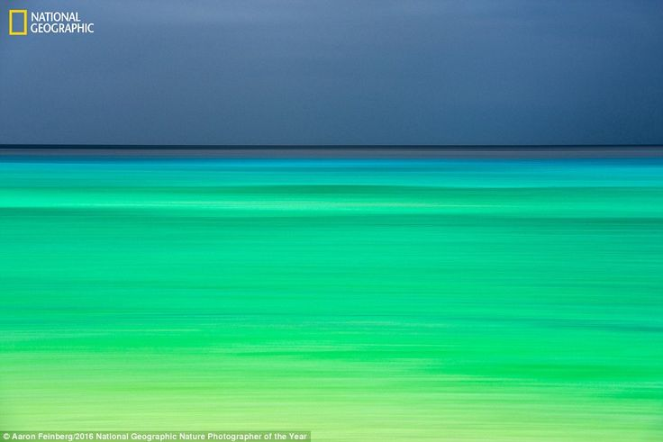 The green and blue colours of the ocean merge together to create a stunning image by Aaron...