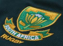 Google Image Result for http://blog.lovell-rugby.co.uk/wp-content/uploads/2011/04/boks-rwc-2011-3.jpg