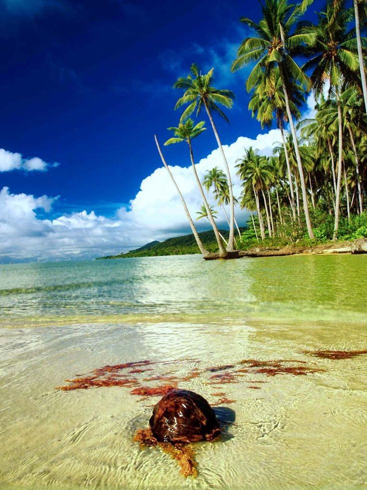 Kadur, Laut Island, Natuna, Riau Islands, Indonesia