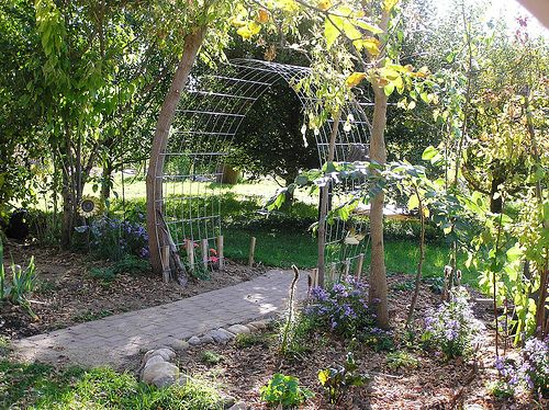 farmhouse outdoor archway trellis | Arched trellis from cattle panels -
