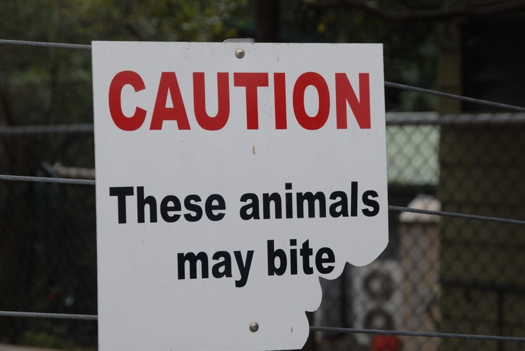 Sign in the Koala Park, Brisbane, Australia. Sometimes a visual representation means more than words!