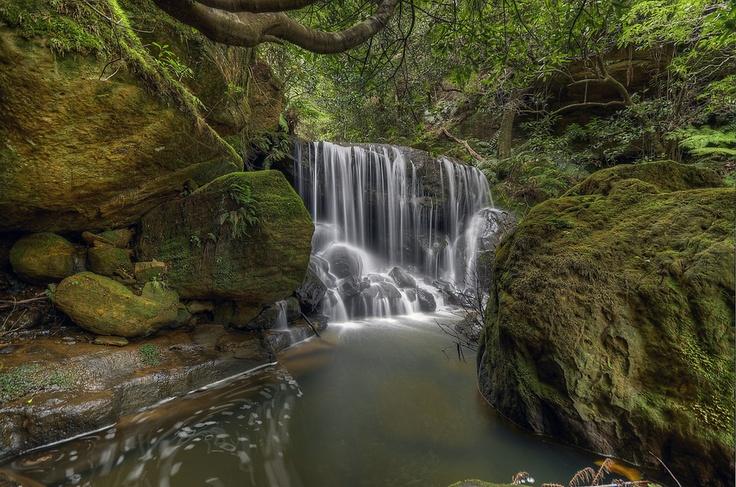 Leura Cascades. Blue Mountains NSW Australia.