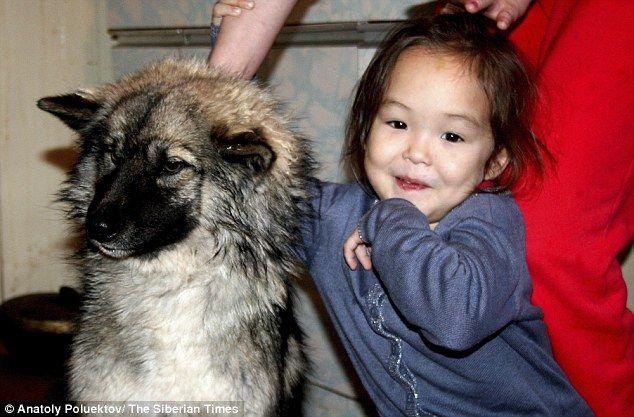 Karina Chikitova è una bambina che nel 2014, a soli 4 anni, si è persa nella foresta per 11 giorni ma è riuscita a sopravvivere anche all'aiuto del suo cane