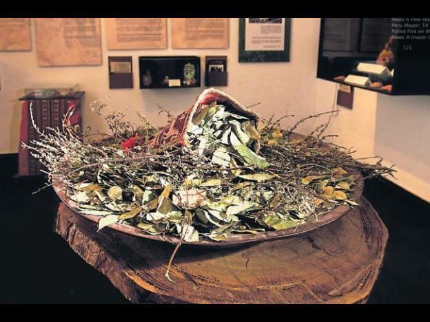 Cusco museum showcases the fascinating history of Peru's plants - Peru this Week