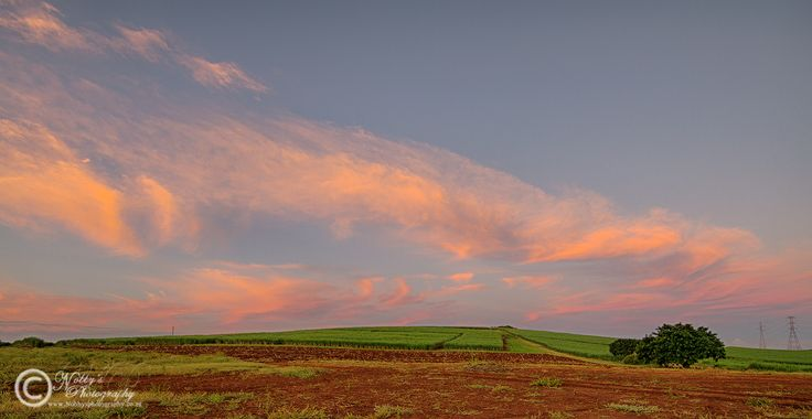 Taken on the outskirts of Empangeni South Africa a sunset view from the sugar cane fields