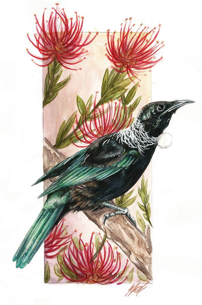 'New Zealand Tui in Pohutukawa', watercolour. www.primalarc.com