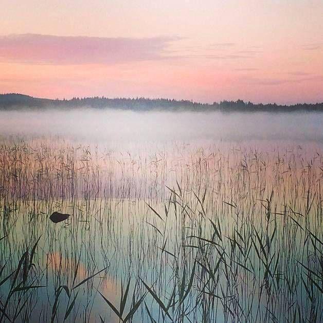 Tältä näytti yötön yö Osmankajärvellä.//Midnight Sun at Osmankajärvi (järvi=lake)