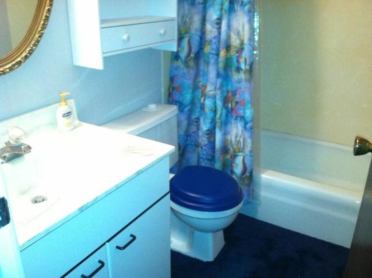 Dark blue carpet in the bathroom, a designers dream.