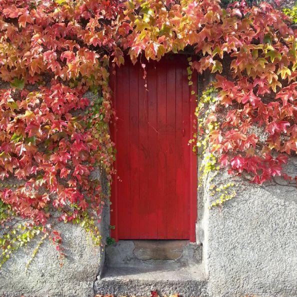 doors of Dublin, red door