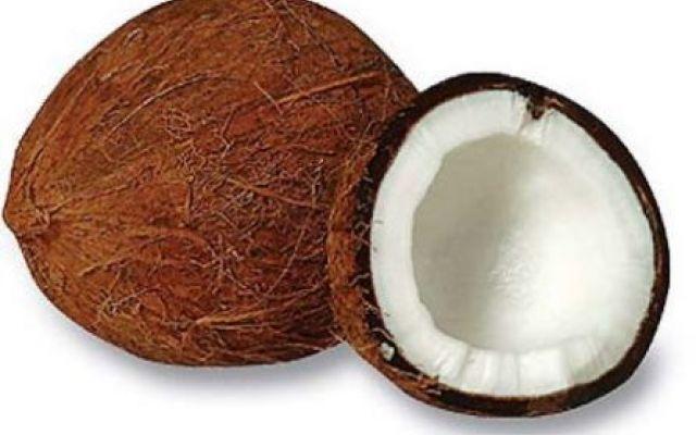 Alimentazione - L'acqua di cocco Lacqua di cocco contiene inoltre proteine che permettono lassimilazione immediata nella circolazio acqua di cocco bevanda noce di cocco