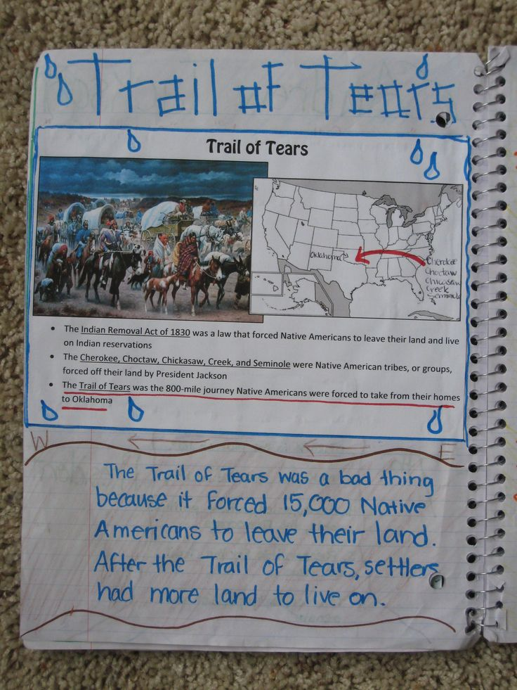 trail of tears journal Cover to trail of tears in barry county booklet by ted roller  the b b cannon  diary tells of the illness, death, and heartache suffered by the cherokee nation.