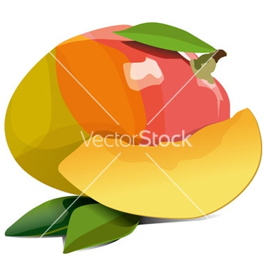 yummy mango! on vectorstock