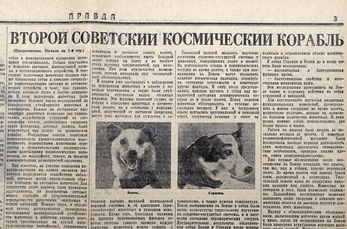 960 , September 5 - USSR RUSSIA - Russian Space Dogs , Sputnik-2 , BELKA & STRELKA Space Dogs . Genuine Vintage Main Soviet Communist Propaganda Newspaper - 5 September, 1960 Technical information regarding the flight , photo of Belka and Strelka after the flight.