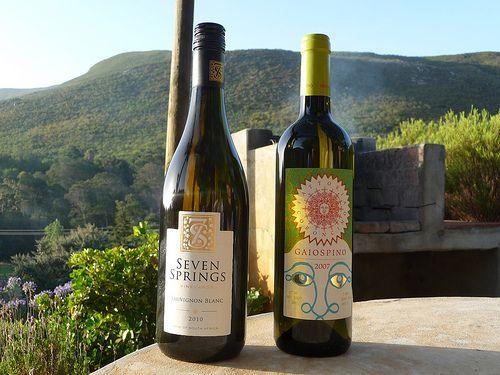 South Africa meets Italy #vino #verdicchio