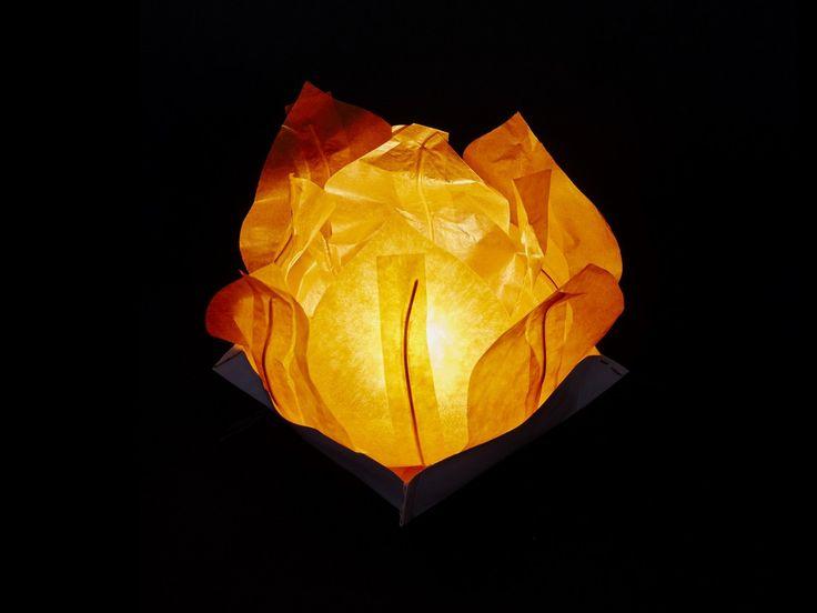 Ninfea Galleggiante di carta di riso arancione. Diametro 30 cm. Sono inclusi la candela, il manuale e il pennarello. Riutilizzabile, basta cambiare la candela.Istruzioni, la preparazione è molto facileScrivere...
