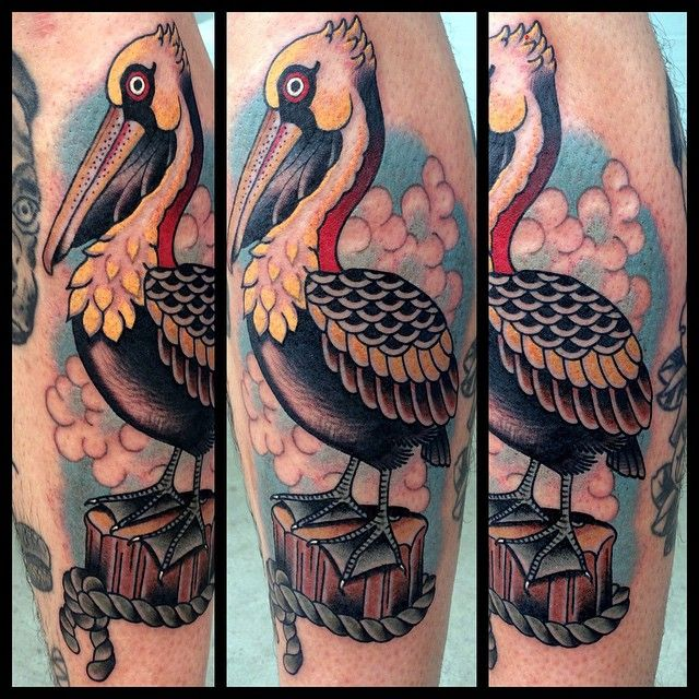 Traditional style pelican tattoo