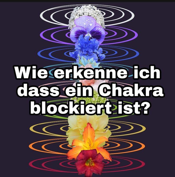 Chakra ist Sanskrit und bedeutet sich drehendes Rad. Chakras werden auch als Pad… – The Spirit of life
