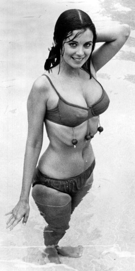 Phyllis Davis Us Actress Actresses American Actress