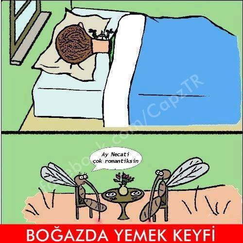 Boğazda Yemek Keyfi - Karikatür | Komik Karikatürler 2013 | Komik Resimler