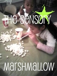 Oral Motor activity - Sensory Game with Marshmallows