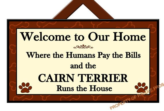 CAIRN TERRIER Runs the House - Welcome Sign - Dog Plaque - Home Decor - Gift Idea - Art - Dog Sign on Etsy, £12.37
