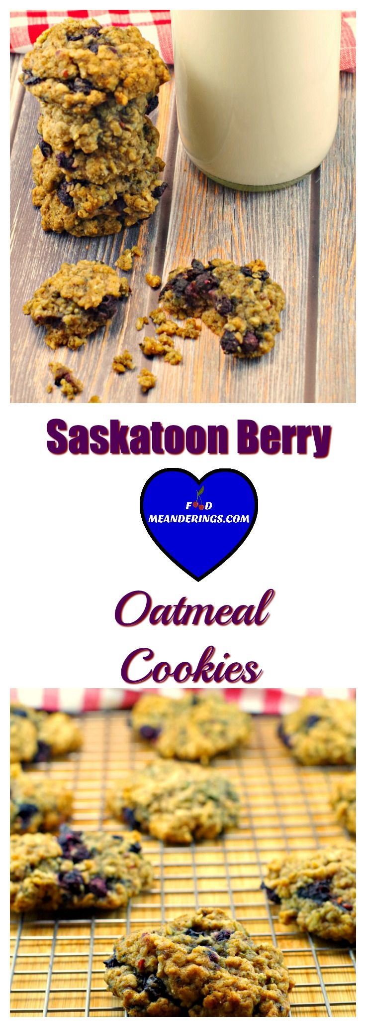 These soft oatmeal Saskatoon berry cookies (Juneberry cookies), with a nutty almond note, are perfect for any time of the year. A delicious Saskatoon berry recipe!