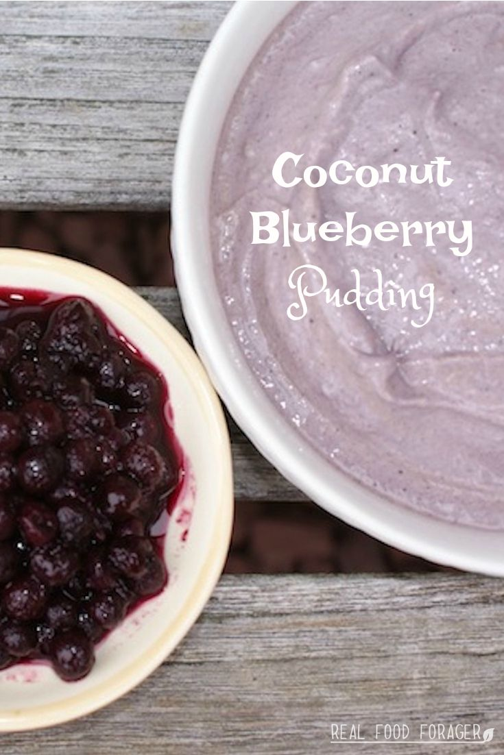 Coconut Blueberry Pudding (DF, SCD, GAPS, AIP, Paleo). Cold, creamy and deliciously satisfying!
