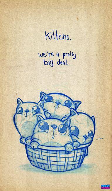 Kittens. We're a pretty big deal. PODGY PANDA