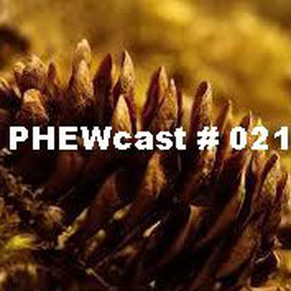 "Check out ""PHEWcast # 021"" by Dj Phew on Mixcloud"