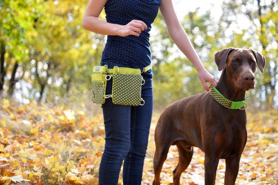 Unique handbag/weist bag tailored for dog owners treat