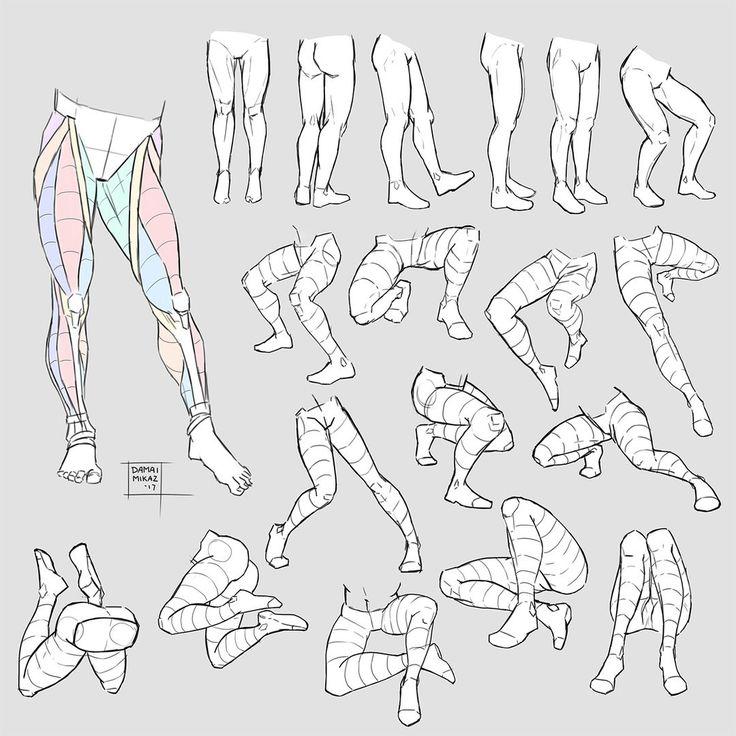 188 besten Legs Bilder auf Pinterest | Anatomieverweis, Beinanatomie ...