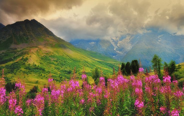 Photograph alps by Michel Pampaloni on 500px
