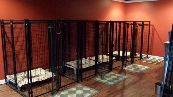 Another way to use the 2' X 2' fence panels. You can construct them into little square kennels. These ones are 4' X 4' wide and 5' tall. And they actually look good.