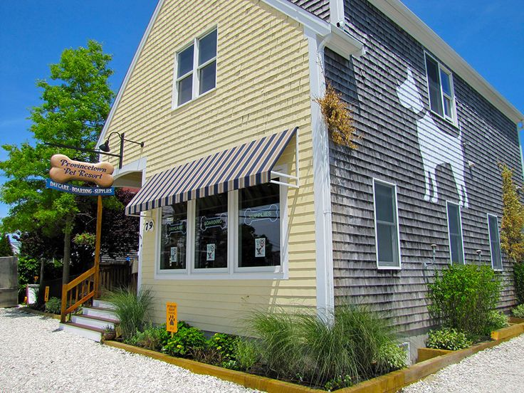 Provincetown Cape Cod Pet Resort Boarding, Doggie
