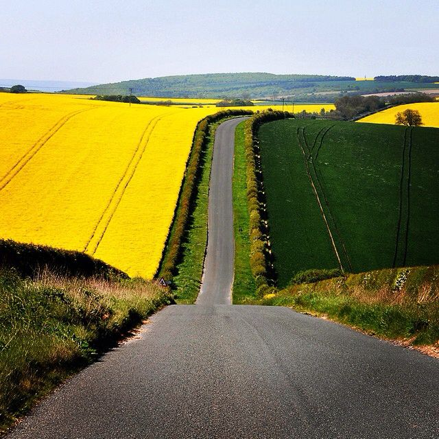 With less than 6 months to go to the Tour de Yorkshire, where does everyone want it to go? This road in the Wolds looks up to the task! #TdY #Yorkshire #Wolds #EastYorkshire