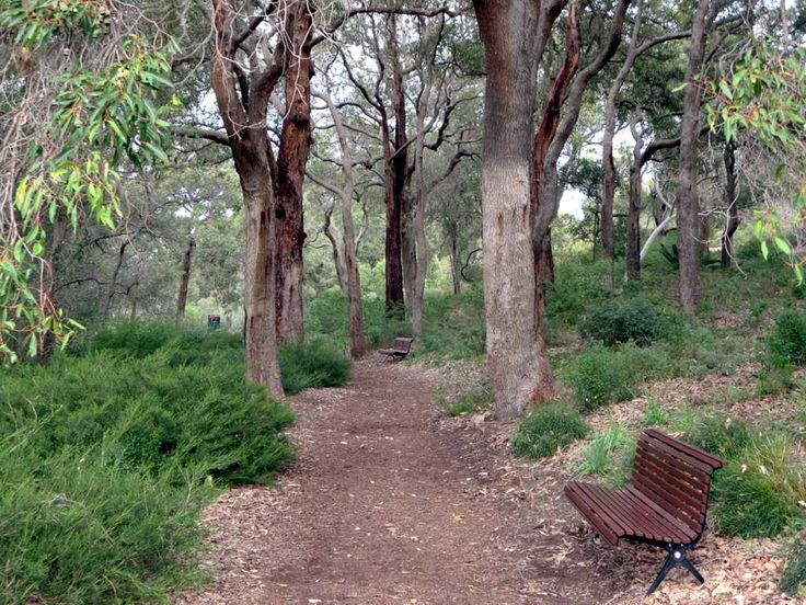 King's Park and Botanic Garden in Perth, Western Australia, offers many peaceful walks.