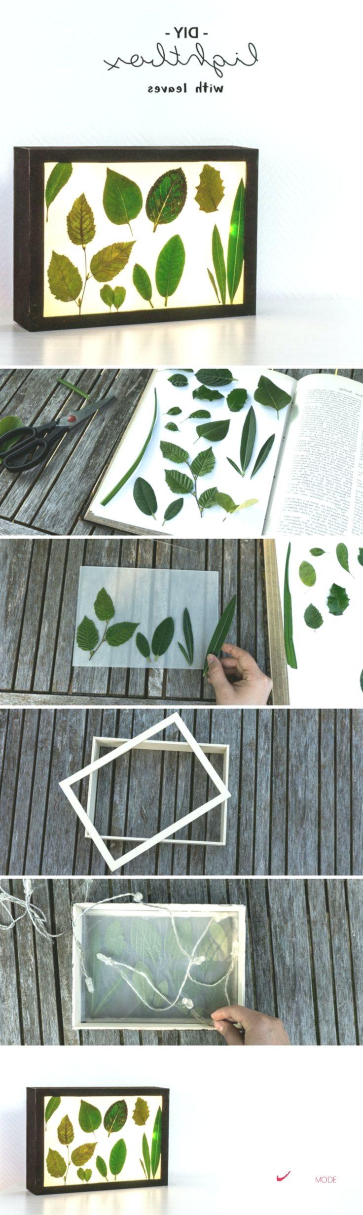 DIY Florale Lichtbox selber bauen: So funktioniert es – Herren Mode