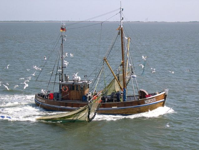 Haaaah...little boat looking for crabs...(Norderney, North Sea)