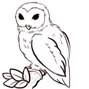 How to Draw Owls, Step by Step, Birds, Animals, FREE Online Drawing Tutorial, Added by PuzzlePieces, February 12, 2011, 6:40:46 am