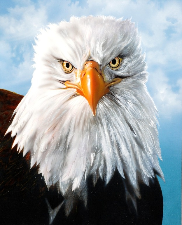 """Gary Longordo; Acrylic, 2012, Painting """"Eagle Eye"""""""