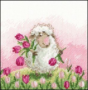 Sheep Tulips