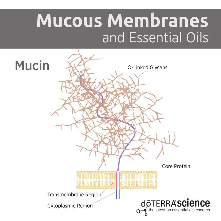 Mucous Membranes and Essential Oils