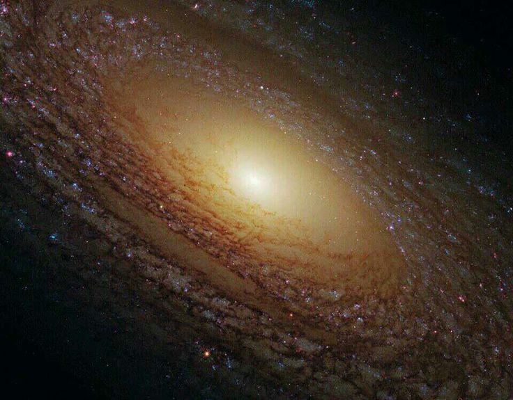 La colosal Galaxia espiral NGC 2841, ubicada en la constelación Osa Mayor, distante a unos 46 millones de años-luz.